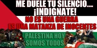 20100605104320-palestina-libre.jpg