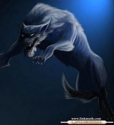 20110402174934-lobo-saltando-y-atacando.jpg