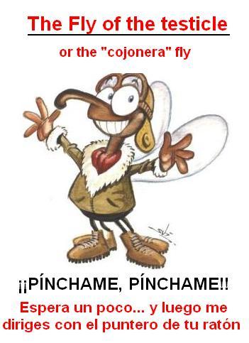 20110428184156-mosca-20cojonera.jpg