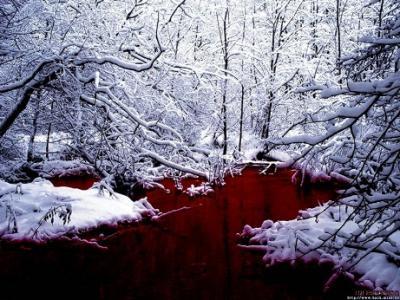 20111106105619-rio-de-sangre-1024x768-335561.jpg